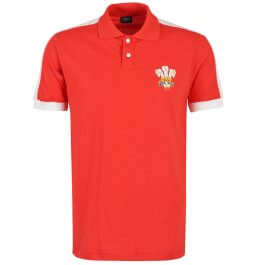 Wales Rugby World Cup Polo